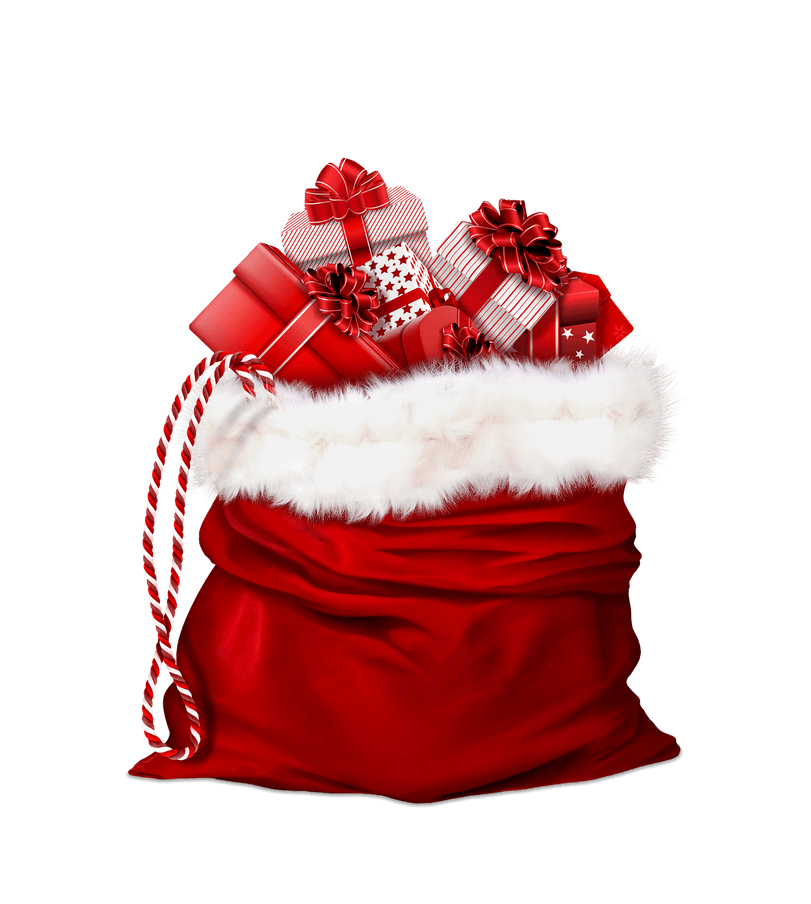 bag-for-gifts-2927962_1920.png